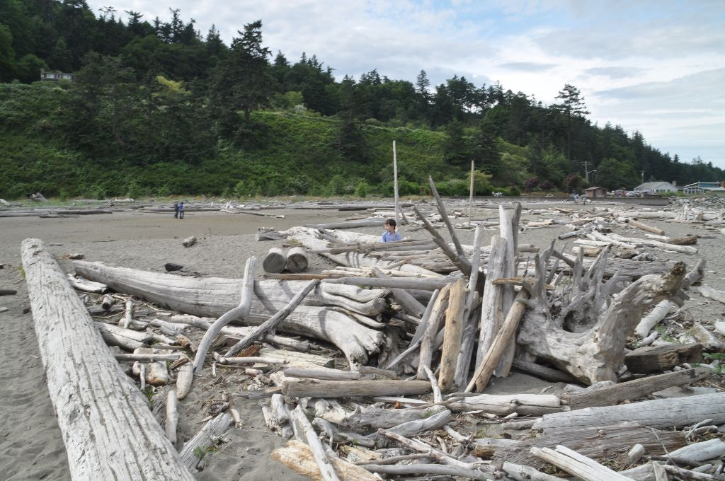 2012-06-29-Whidbey (5)