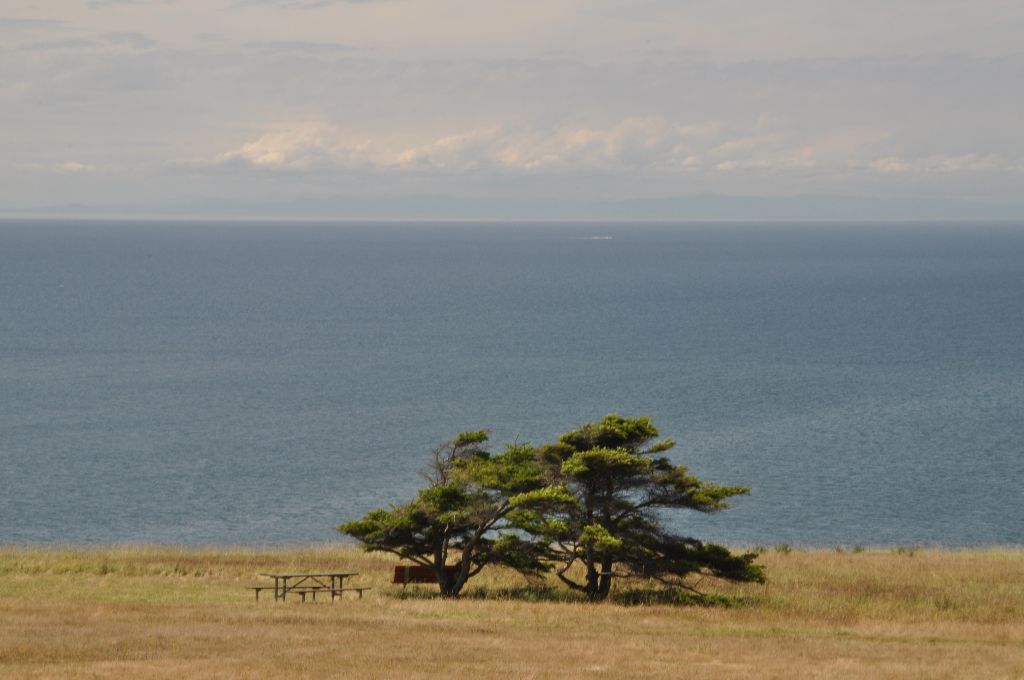 2012-06-29-Whidbey (7)