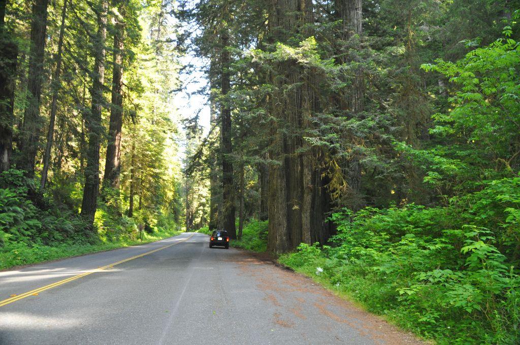 2012-07-06-CA-Coast (14)