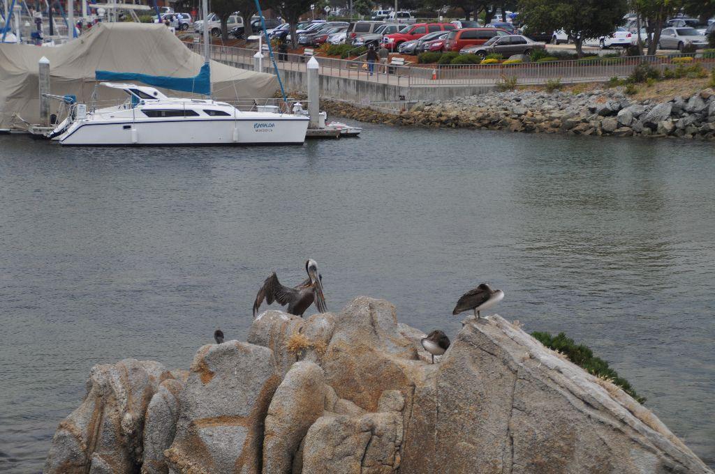 2012-07-11-CoastalLine (10)